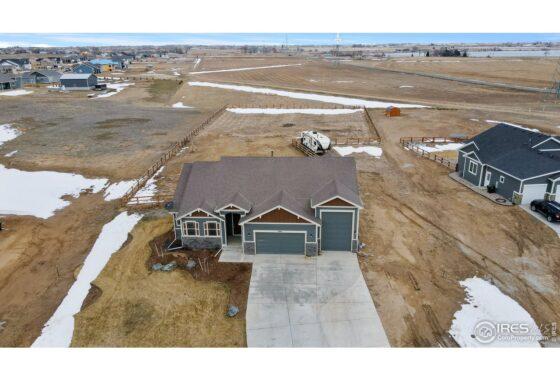 36-5066 Prairie Lark