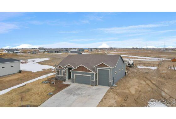 39-5066 Prairie Lark