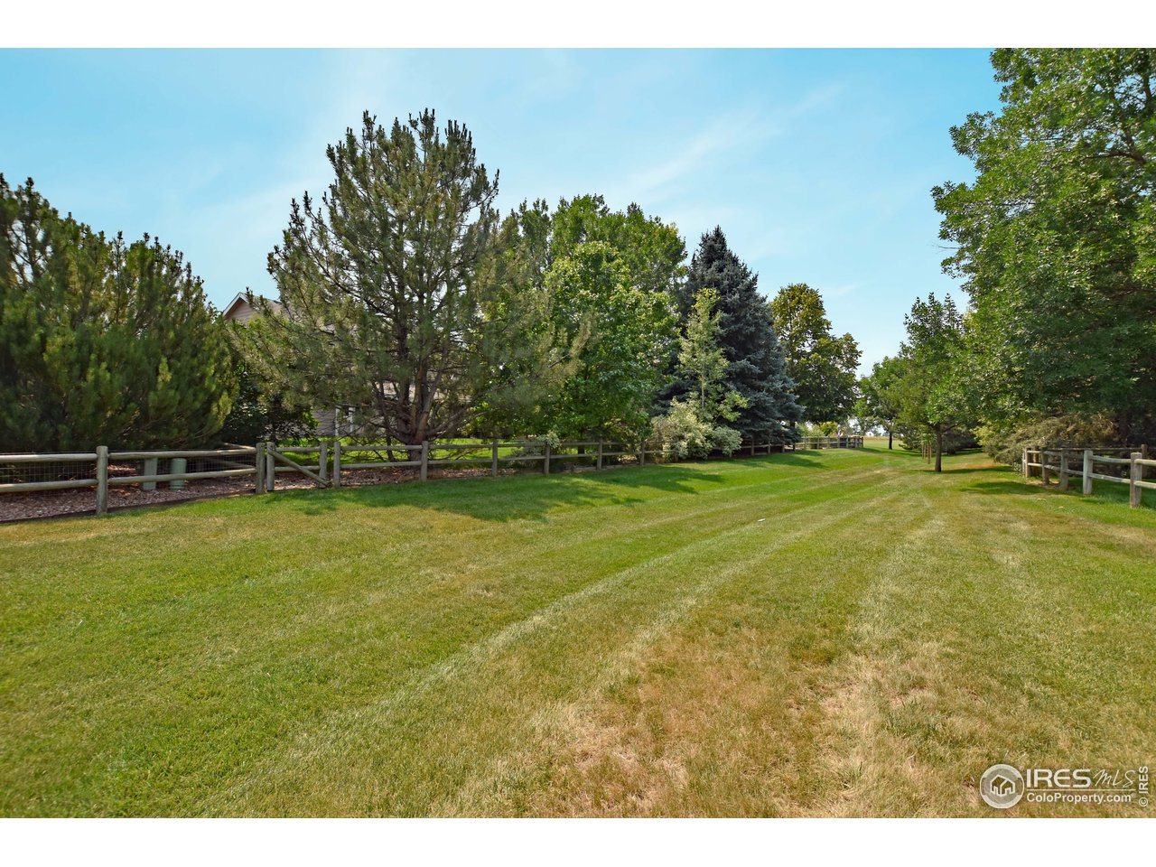 32- 5619 Red Willow