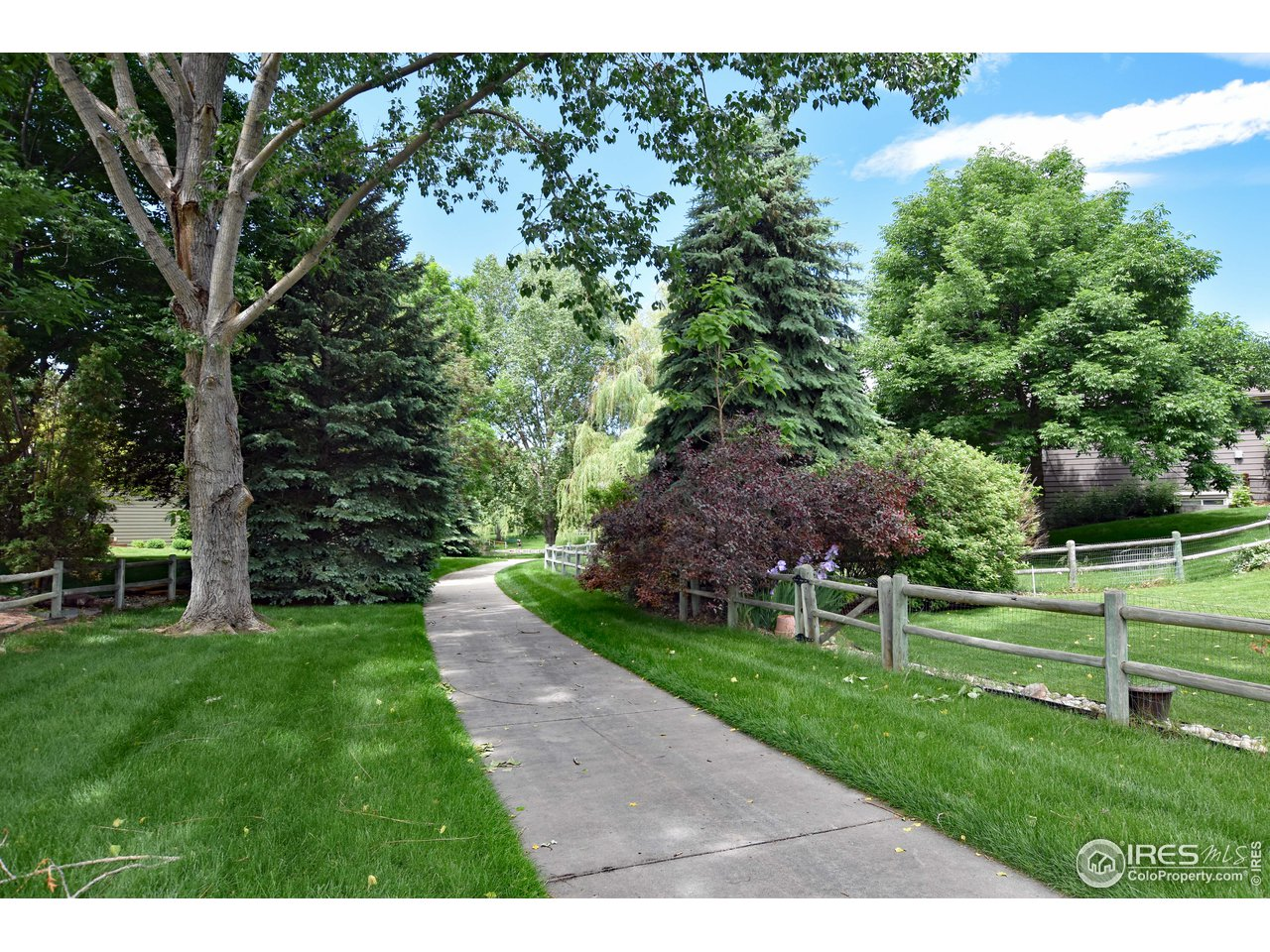 40- 5619 Red Willow
